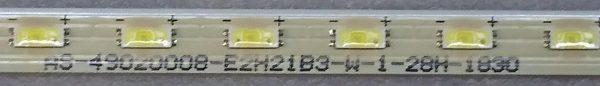AS-49020008